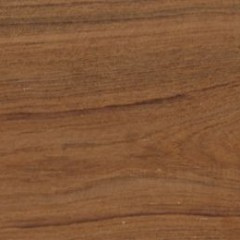 Teak Wood: Characteristics and Uses
