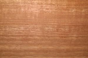 Eucalyptus Wood