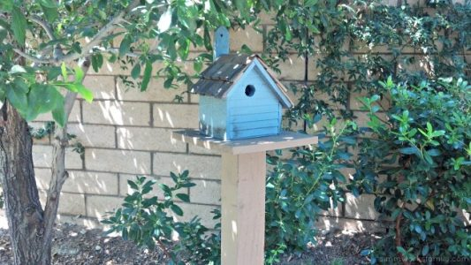 DIY Birdhouses