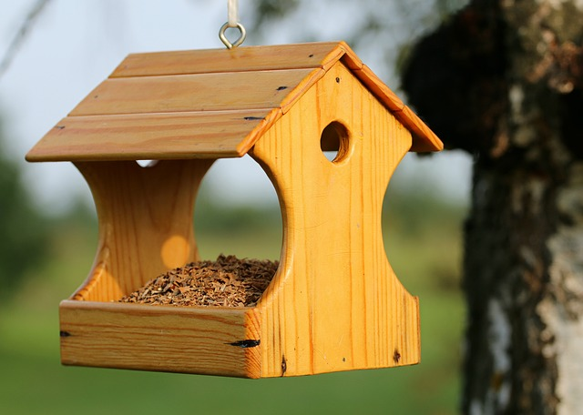 Top 10 Bird Feeder Plans - The Basic Woodworking
